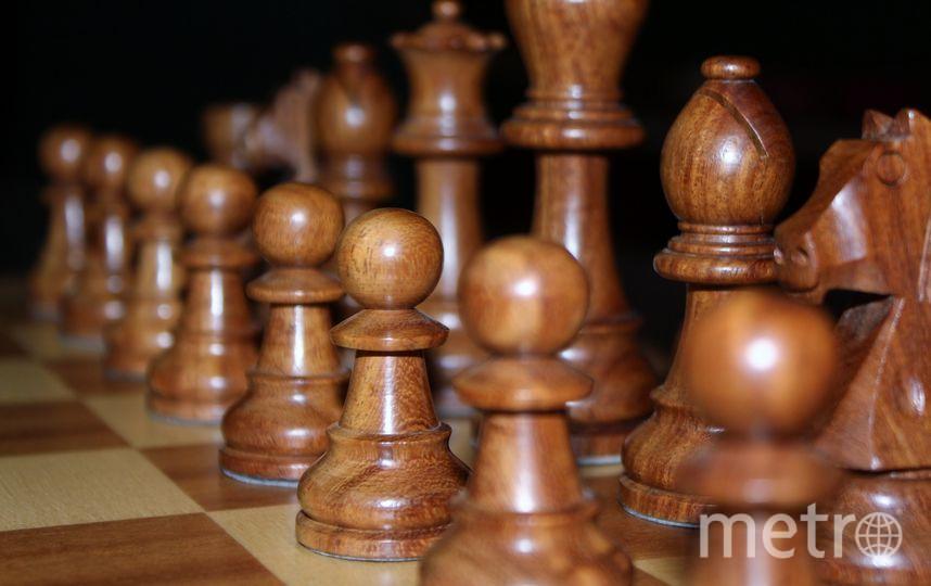 """В Москве на станции метро """"Воробьёвы горы"""" открылась выставка шахмат. Фото pixabey"""