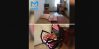 Появились подробности о маме ребёнка, брошенного в съёмном жилье в Красном Селе