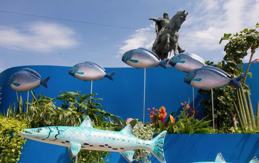 """Фестиваль """"Рыбная неделя"""". Архивное фото. Фото Василий Кузьмичёнок"""