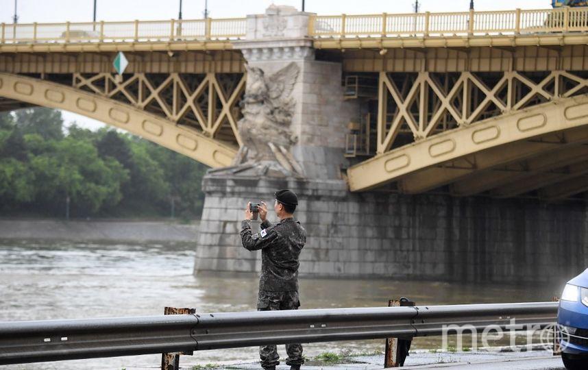 Поисково-спасательные работы на Дунае. Фото AFP
