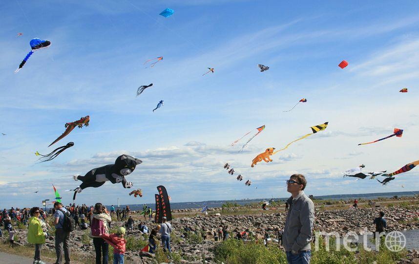 Форт Константин: фестиваль воздушных змеев. Фото Предоставлено организаторами