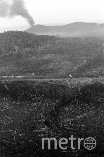 Факел природного газа, вырвавшегося из-под земли. Фото РИА Новости