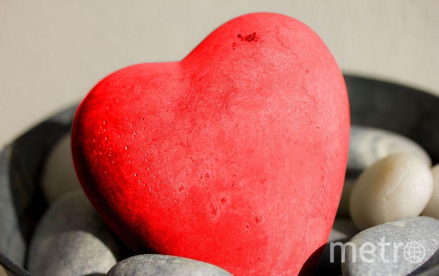 Британские учёные создали пластырь для человеческого сердца. Фото pixabay.com