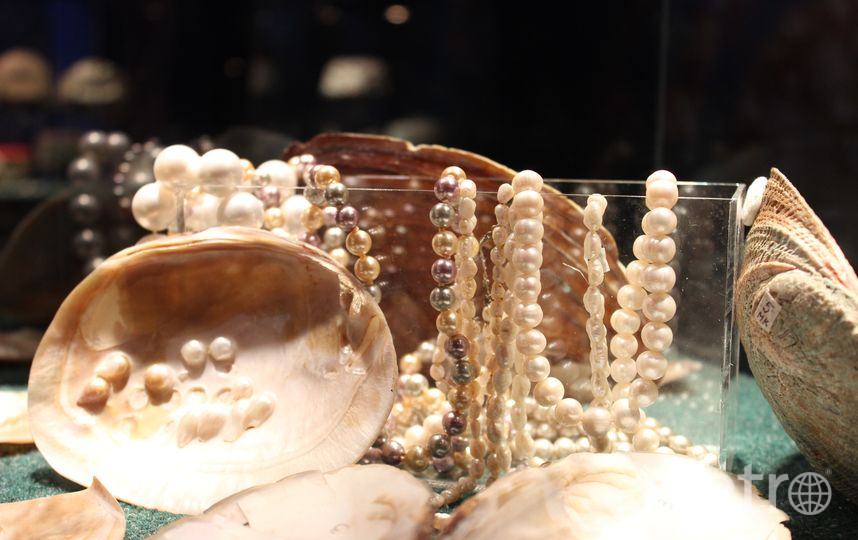 "Коралл, янтарь, жемчуг. Фото Дарья Есенина, ""Metro"""