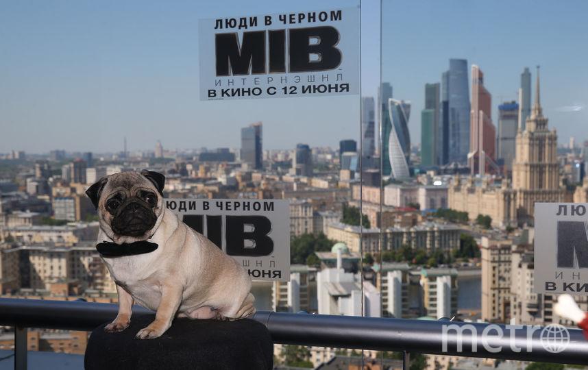 Премьера фильма в России состоится 12 июня. Фото Василий Кузьмичёнок
