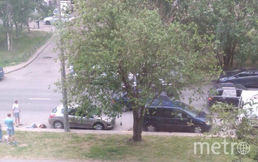В Петербурге сбили девушку вне пешеходного перехода: Фото. Фото ДТП и ЧП | Санкт-Петербург | Питер Онлайн | СПб, vk.com