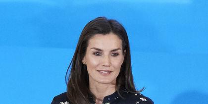 Королева Испании Летиция надела старое платье: фото
