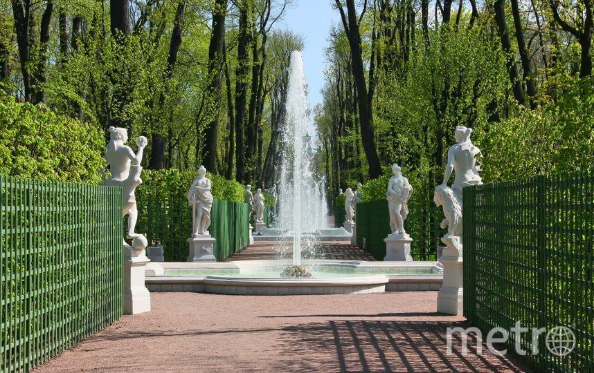 Фото Русского музея. Фото vk.com/rusmuseum, vk.com