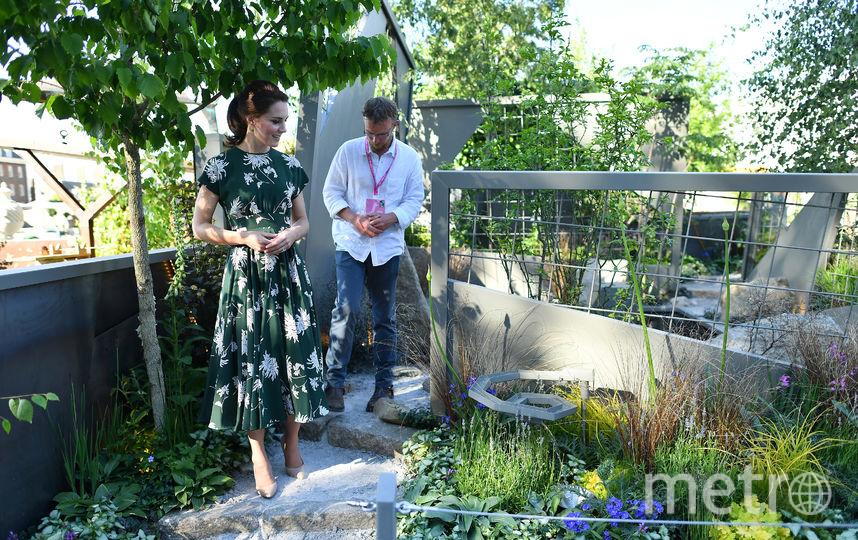 Реставрация сада в мае 2017-го года. Фото Getty