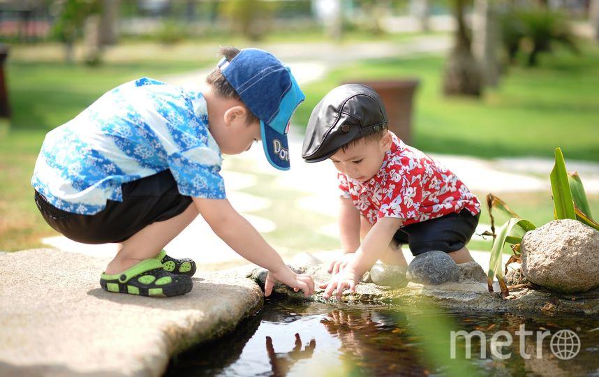 Дети. Фото Pixabay