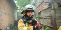 Котов выносили на руках: в приюте для животных в Петербурге произошел пожар (фото)