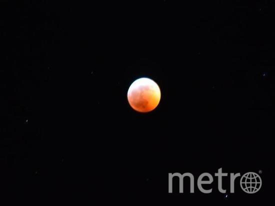 """Земляничная луна вовсе не выглядит розовой. Просто в это время собирают первые летие ягоды. Фото """"Metro"""""""