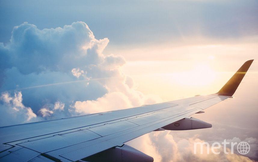 """Вероятность повреждения крыльев в результате турбулентности крайне мала. Фото https://pixabay.com, """"Metro"""""""