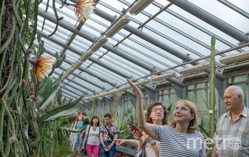 Ботанический сад. Фото vk.com