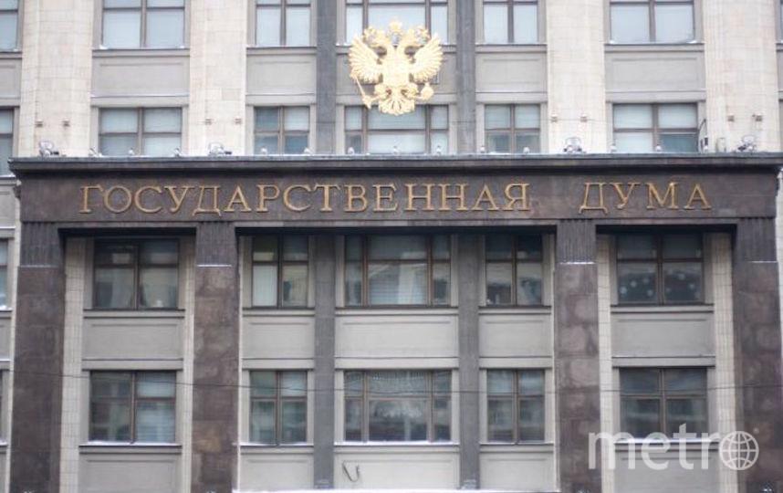 """Госдума РФ. Фото """"Metro"""""""