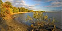 Куда отправиться на прогулку: 6 экологических троп в Петербурге и области