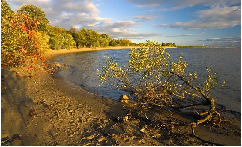 Западный Котлин. Фото infoeco