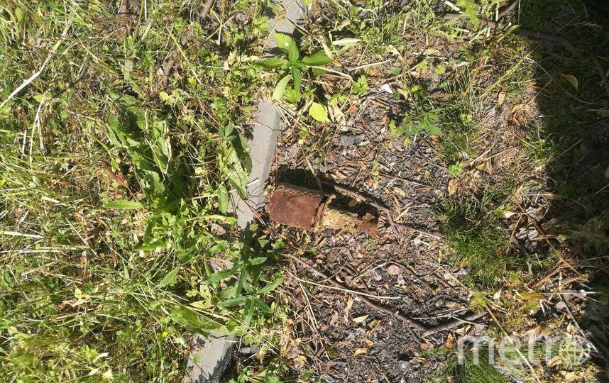 """Ручная противотанковая граната РПГ-41 со взрывателем. Фото предоставлено пресс-службой Росгвардии, """"Metro"""""""