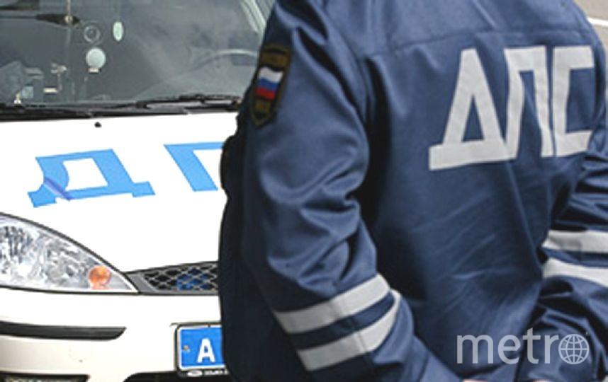 """Причиной ДТП стал лось, выбежавший на дорогу. Фото """"Metro"""""""