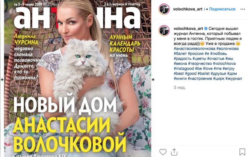 Кот вместе с Волочковой украшал обложку глянца. Фото instagram.com/volochkova_art