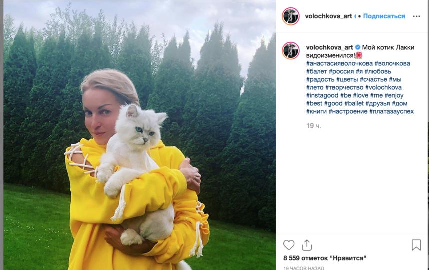 Волочкова с Лакки после стрижки. Фото instagram.com/volochkova_art