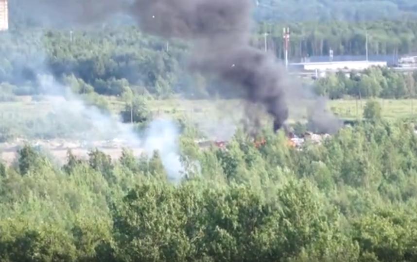 В Петербурге горела несанкционированная свалка: Видео. Фото vranski, vk.com
