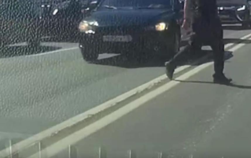 Утенок на дороге - маленькая точка. Тем не менее, внимательные водители замечают их и помогают сохранить жизнь. Фото ДТП и ЧП | Санкт-Петербург | Питер Онлайн | СПб, vk.com