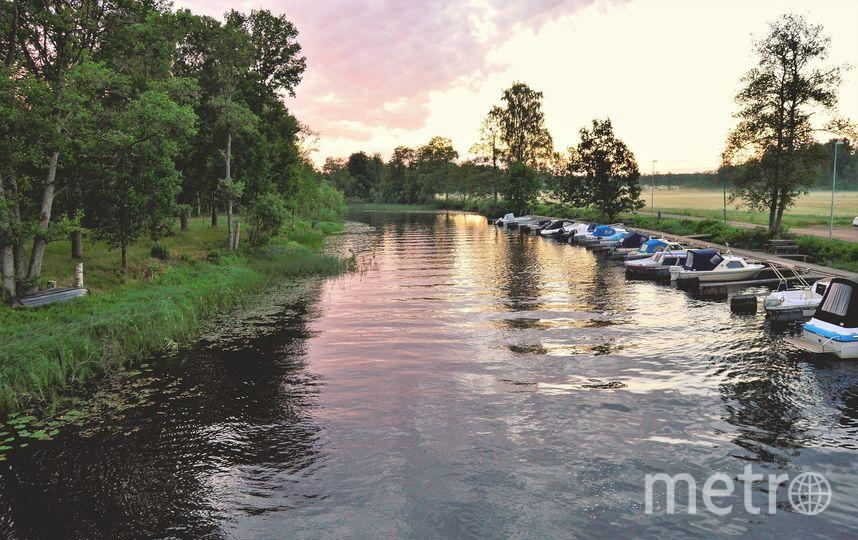 В восьми парках Москвы открыли станции проката лодок и катамаранов. Фото pixabey