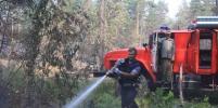 На северо-западе Москвы произошёл природный пожар
