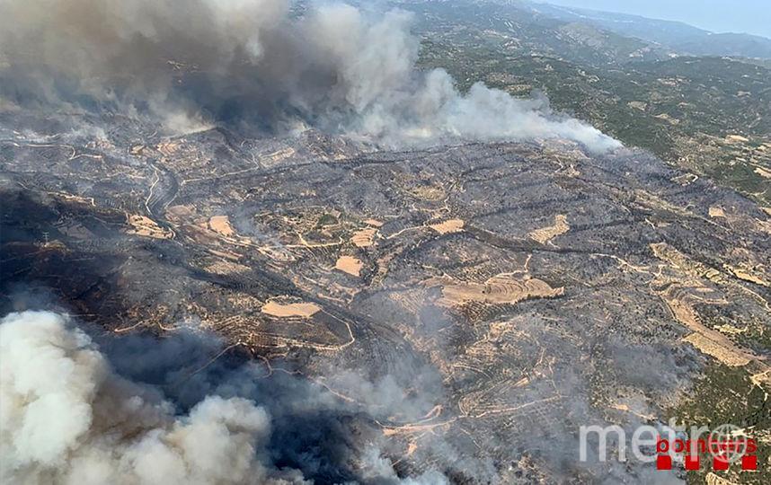 Пожар уничтожил более 5 тыс. га леса. Фото AFP