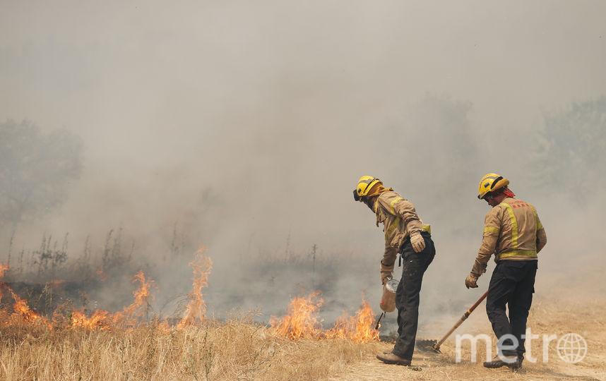 В Каталонии бушует один из самых сильных пожаров за последние 20 лет. Фото AFP