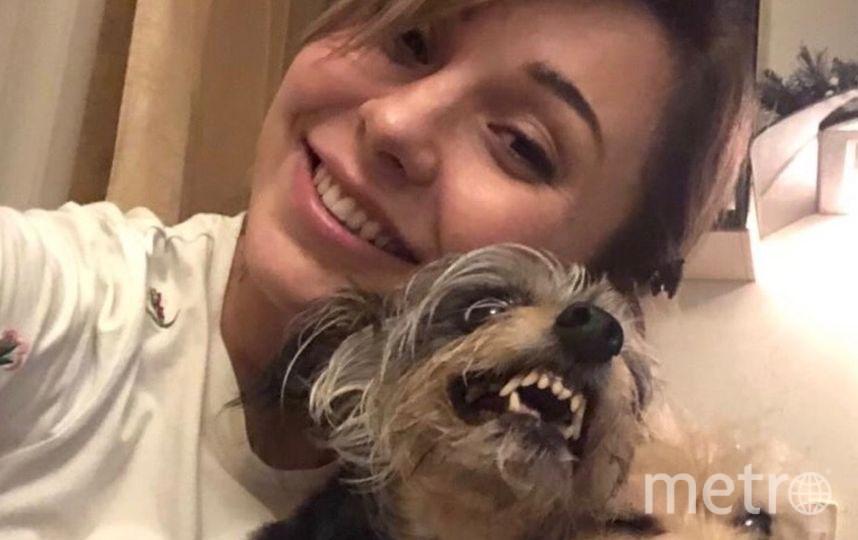 Собаки тоже умеют улыбаться! Мои Шелдон и Адель хоть и страшненькие, зато любимые. Фото Яна