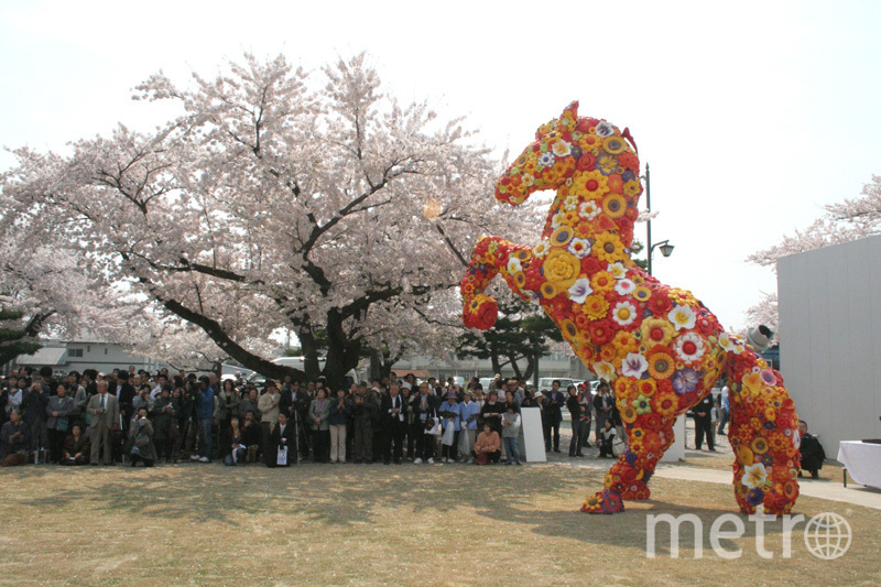 Чой Чжон Хва создаёт инсталляции из подручных материалов. Фото choijeonghwa.com