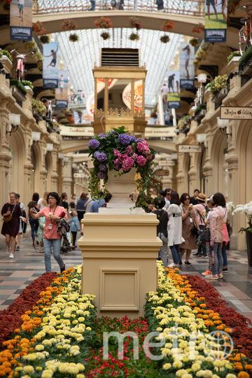 В ГУМе расцвёл цветочный ковёр. Фото Предоставлено организаторами