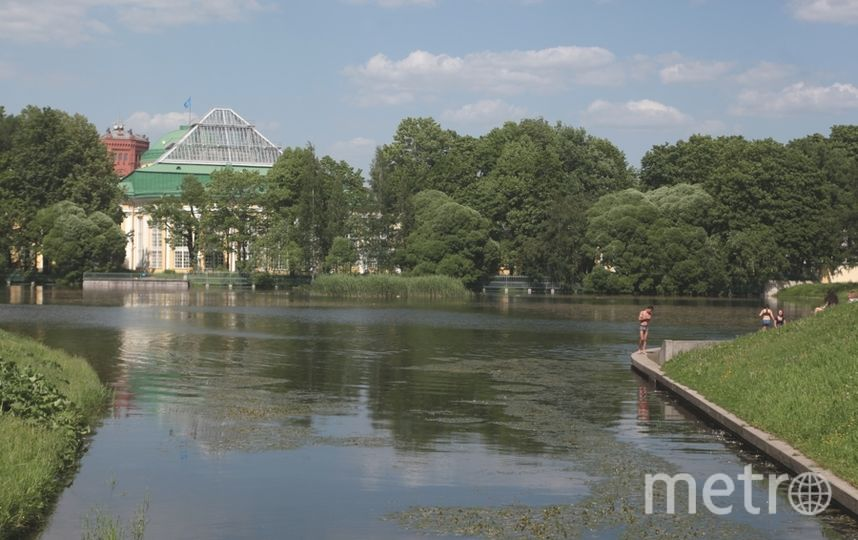 """Таврический сад закрыт из-за непогоды. Фото архив, """"Metro"""""""