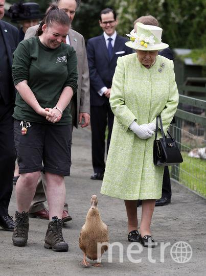Елизавета II посетила ферму 4 июля. Фото Getty