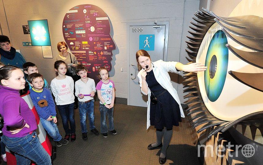 Музей человека запускает летний спецпроект. Фото mos.ru