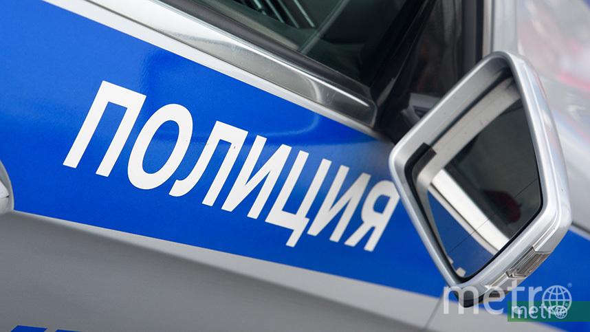 Полиция проводит проверку. Фото Василий Кузьмичёнок