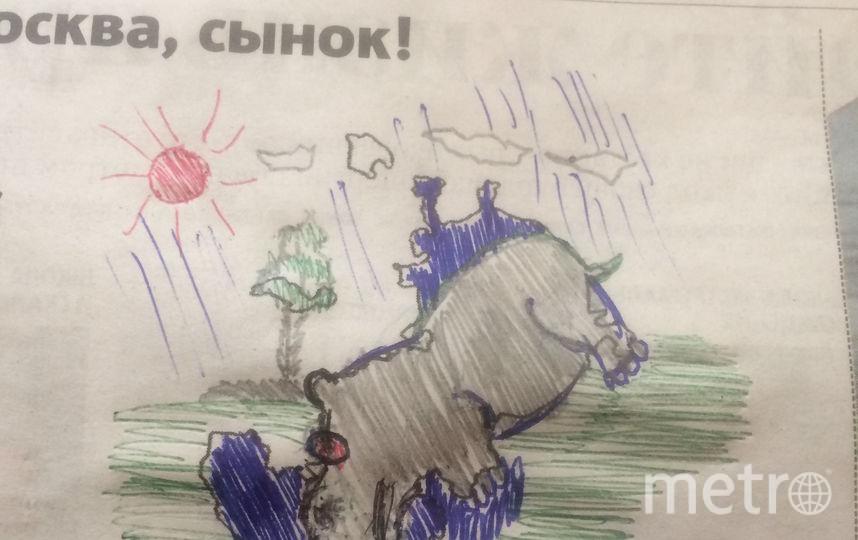 Бегемот в луже. Фото Владимир