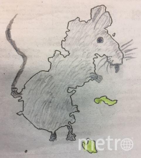 Я перевернула картинку и увидела крысу. Дорисовала немного, и вот. Фото Елена Федорова.