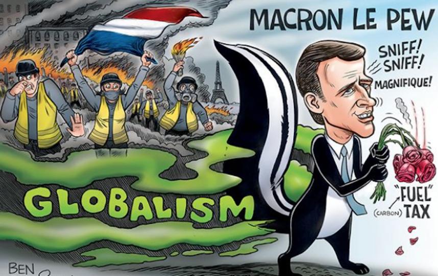 Иллюстрация к протестам «жёлтых жилетов» во Франции. Президент Макрон в образе скунса. Фото Скриншот instagram@ grrrgraphics