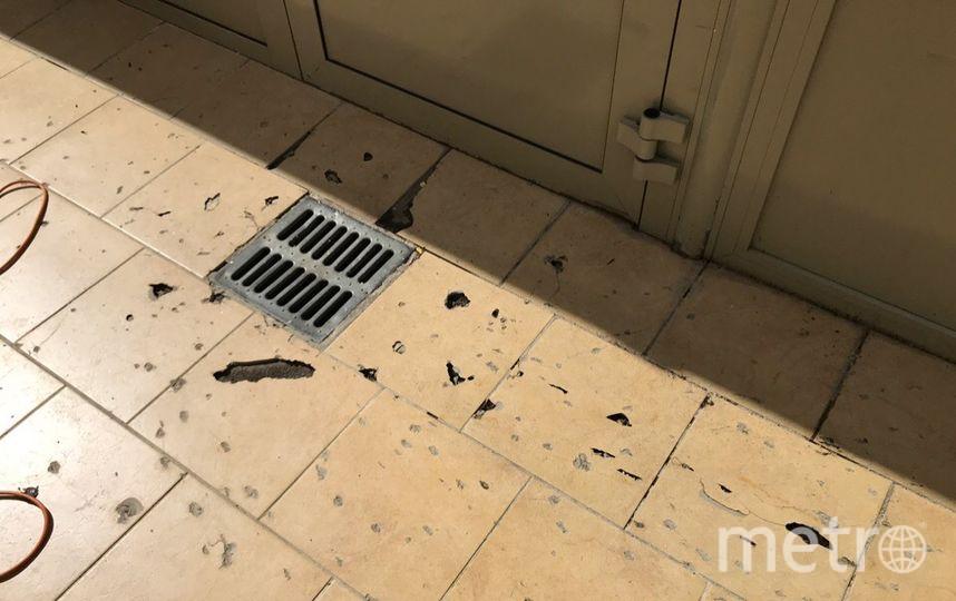 Уличный вольер требует ремонта. Фото Фонд друзей балтийской нерпы / vk.com/sealrescue, vk.com
