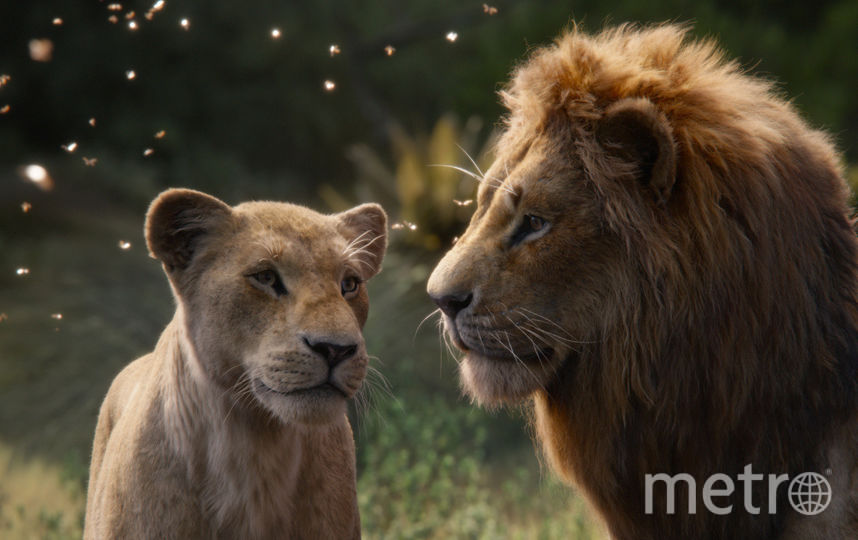 """Кадр из фильма """"Король лев"""". Фото WDSSPR"""