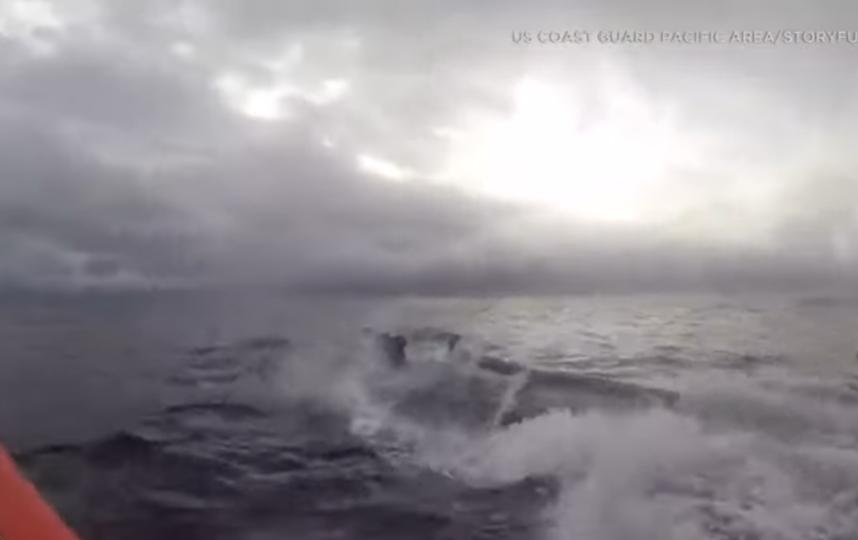 Береговая охрана США перехватила подлодку с наркотиками. Фото Скриншот Youtube