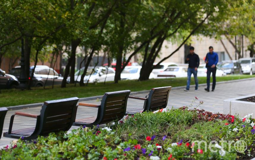 Появилась новая зона отдыха. Фото Василий Кузьмичёнок