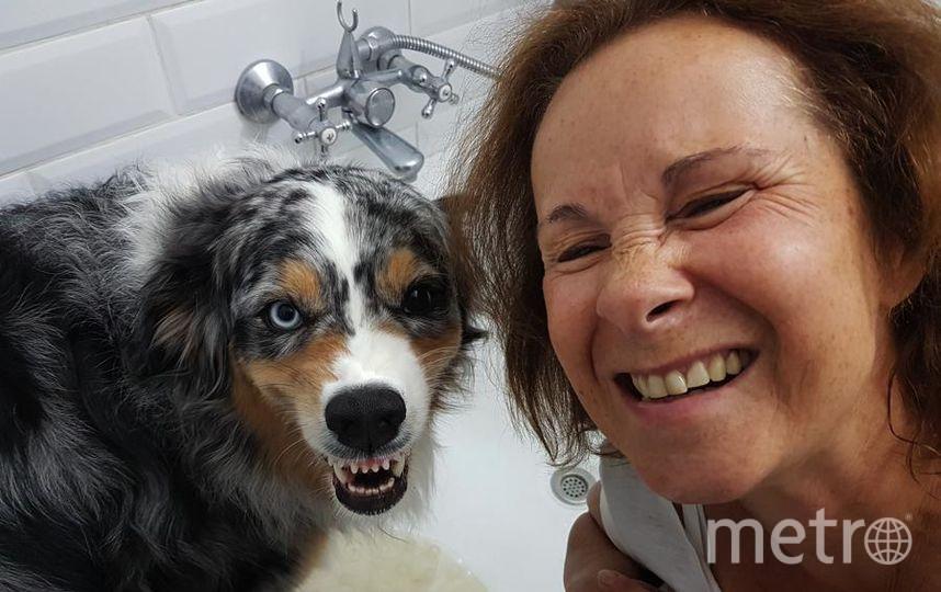 """Австралийская овчарка, зовут Триша. Скалит зубки только от радости. Фото Евгений, """"Metro"""""""