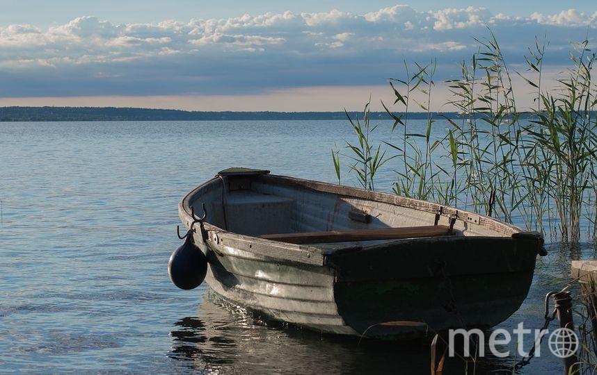 Архивное фото. Фото suetot / pixabay.com