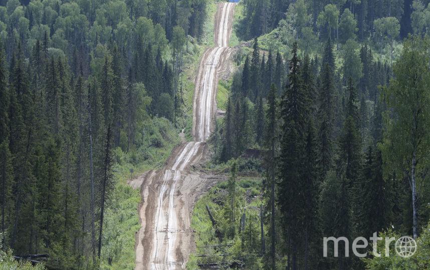 Лесовозная дорога с воздуха. В ранее не затронутые человеческой деятельностью леса, которые еще недавно были недоступны для тяжелой техники, протянулись щупальца новых дорог, по которым пришли лесозаготовители. Фото предоставлено WWF