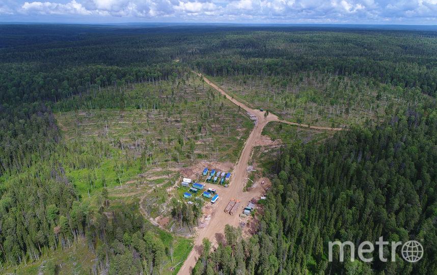 Вахтовый поселок лесозаготовителей. Фото предоставлено WWF