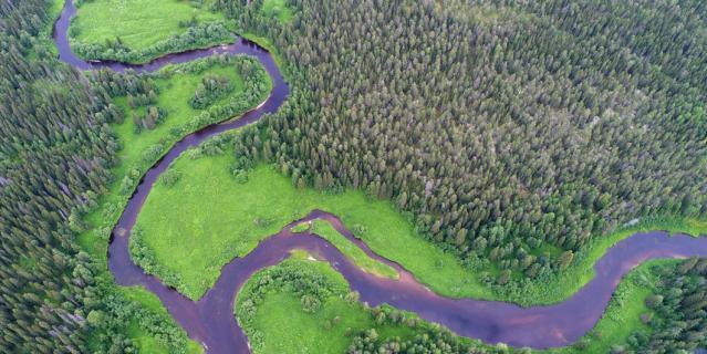 Слияние рек Юлы и Юраса в центральной части будущего заказника.